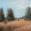 Eastern Red Cedars I, KENNETH HAWKEY